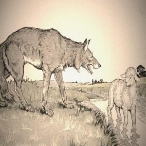 Картинки басни крылова волк и ягненок, любимому